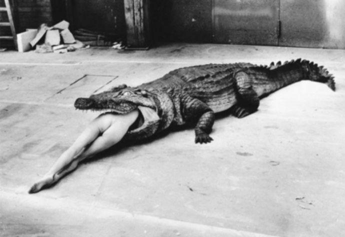 Крокодил съел голую девушку - Эроприколы
